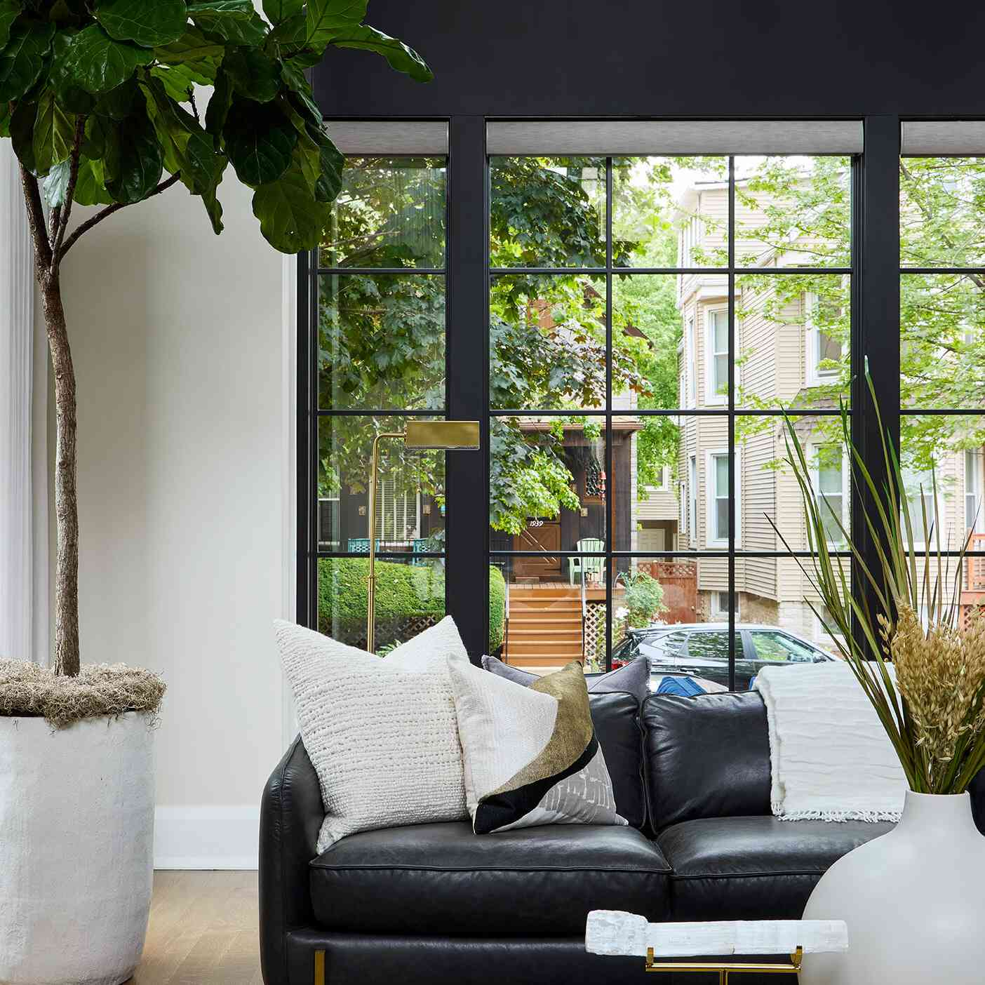 A living room with a black leather couch and a large fiddle leaf fig tree