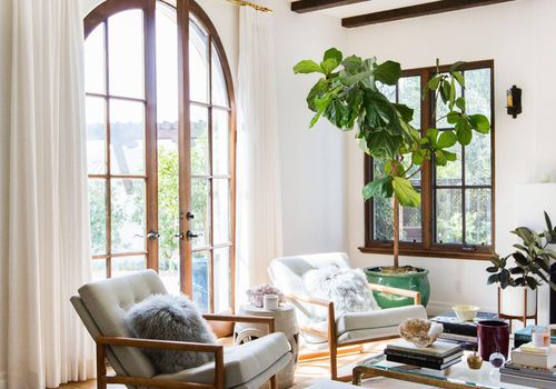 airy plant-filled living room