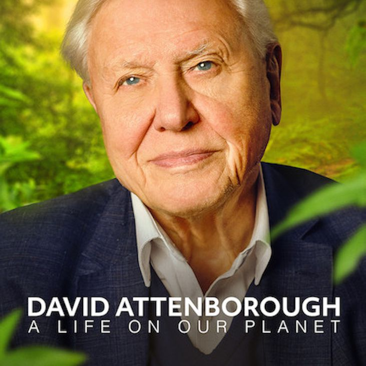David Attenborough: A Life on Our Planet documentary poster