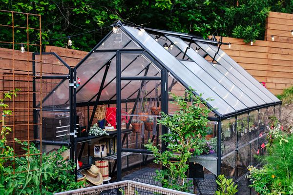 outdoor herb garden