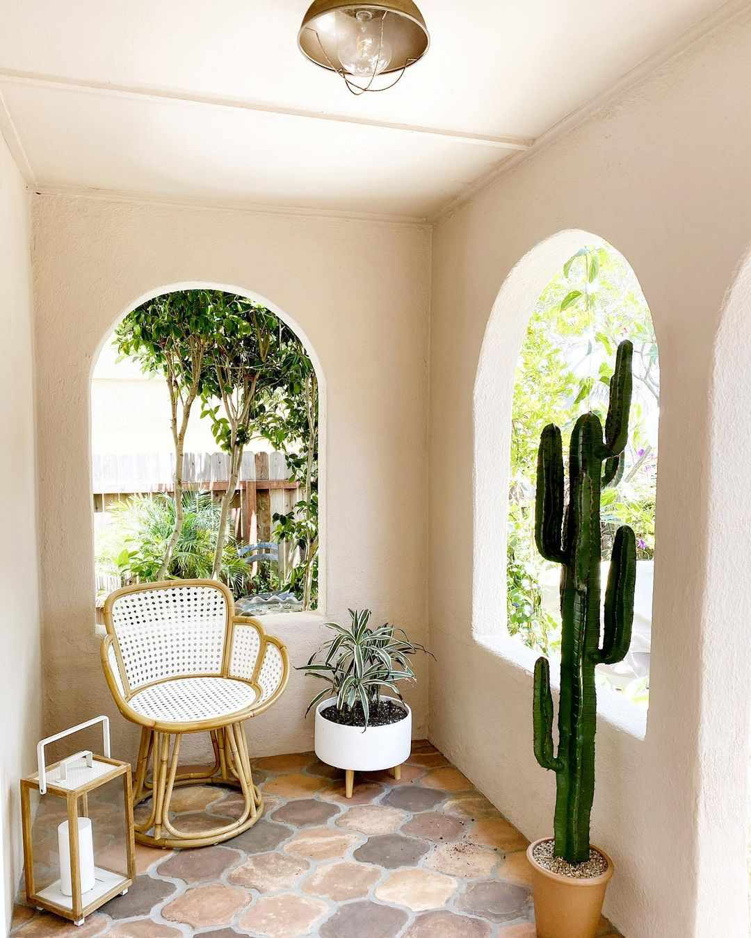 Small patio with a cactus