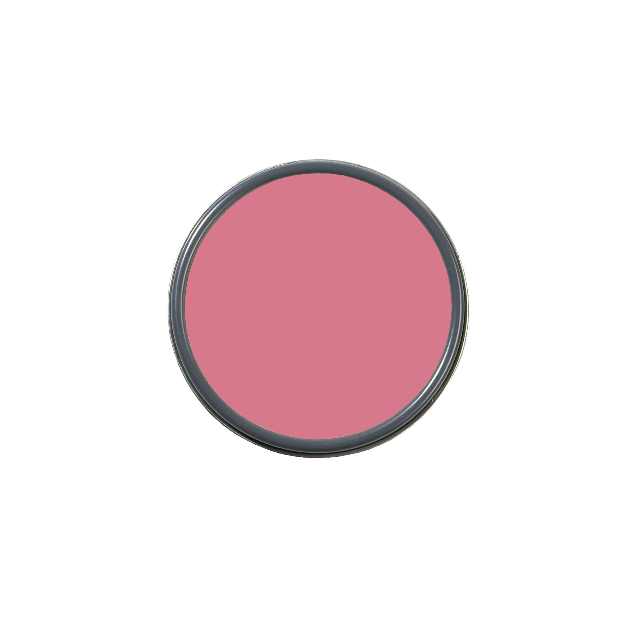 secret rendezvous pink paint