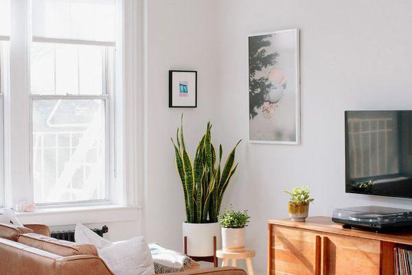 Furnishing an Apartment Living Room