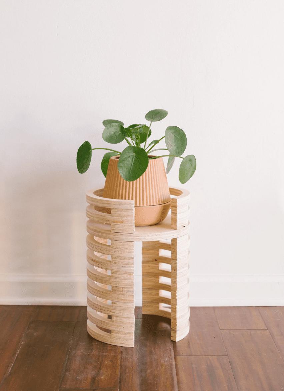 soporte de planta