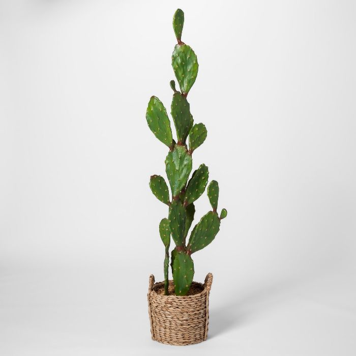 Opalhouse Artificial Cactus in Basket