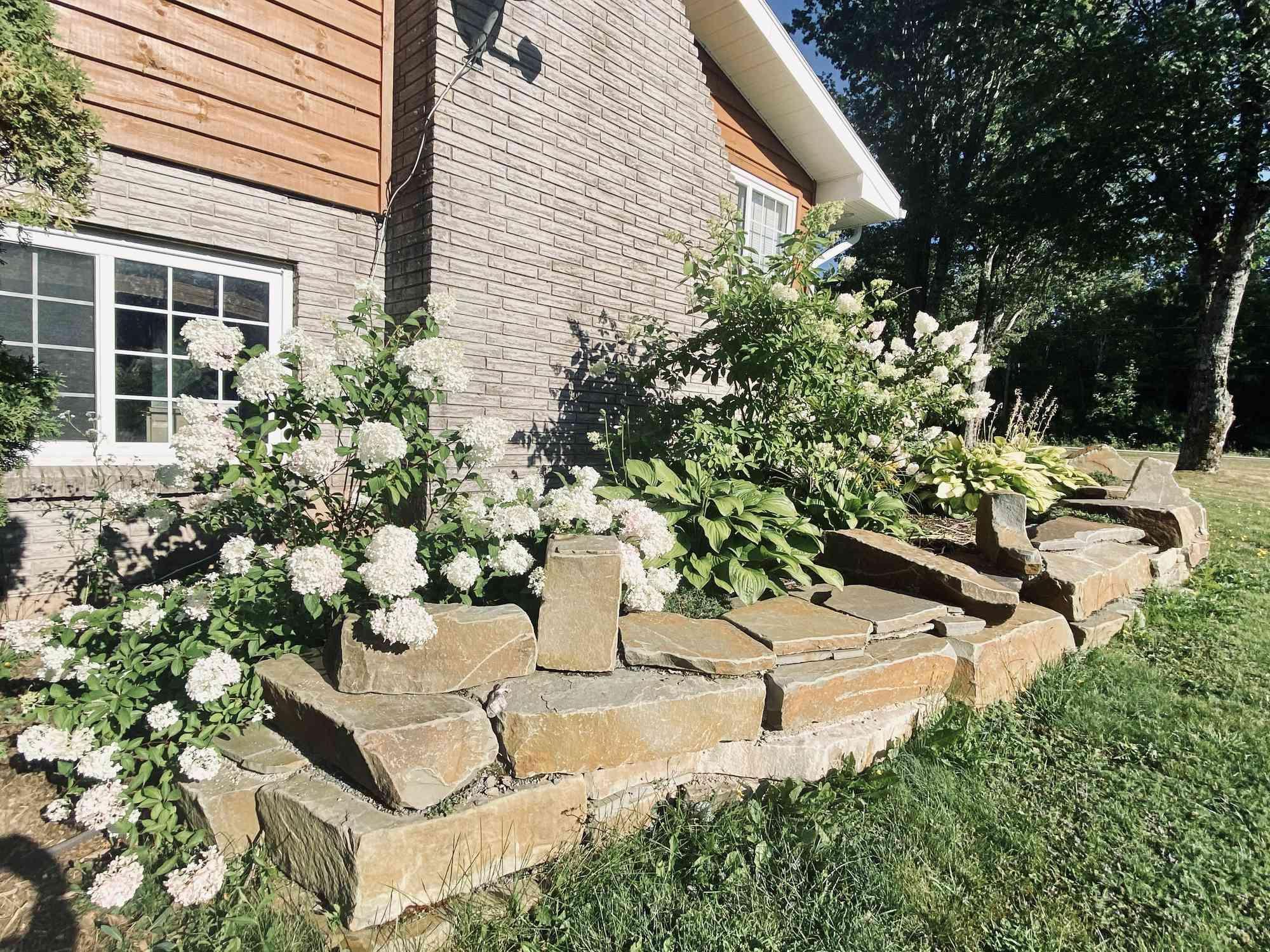 Cottage flower bed with hydrangeas.