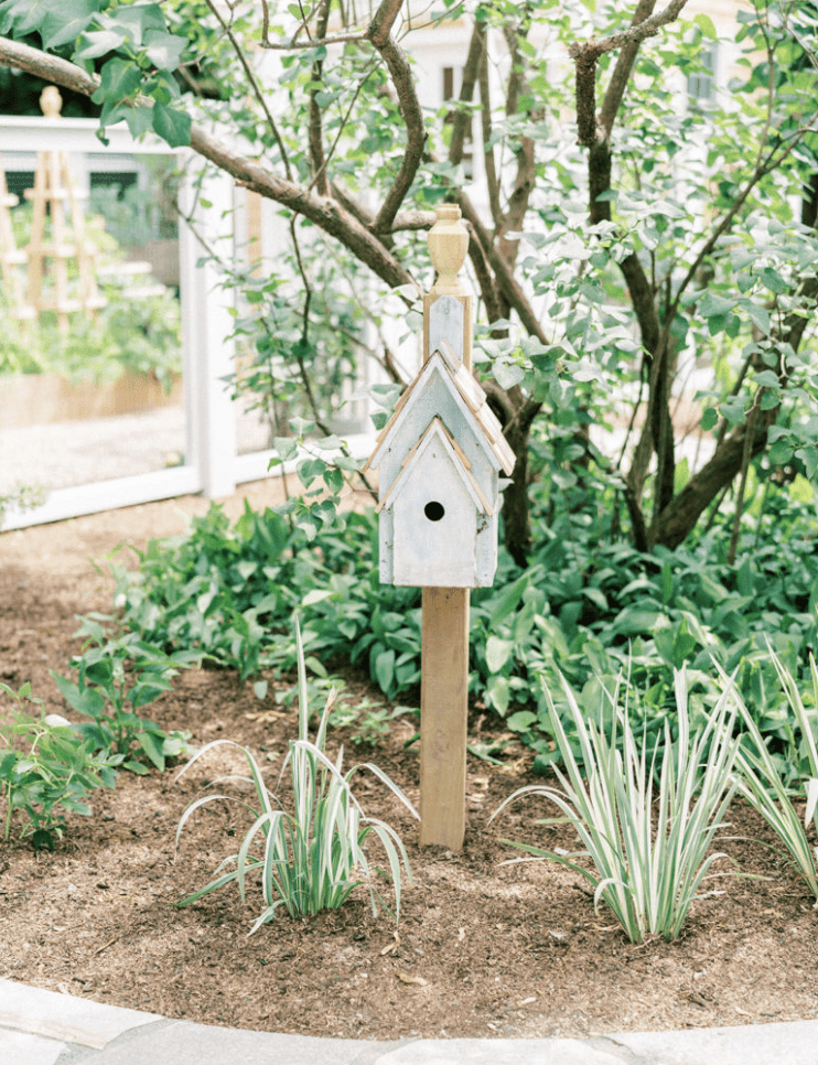 Birdhouse in small patch.