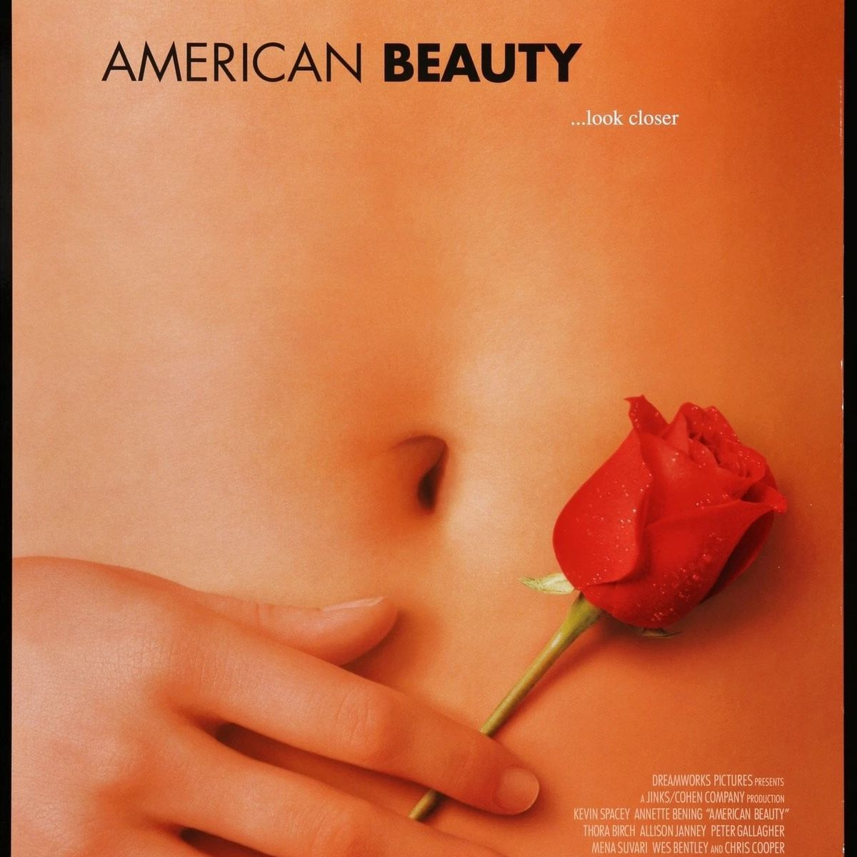 American Beauty (1999) poster.