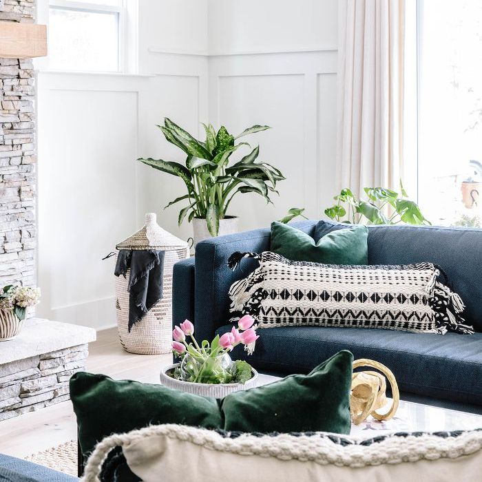 Living room plant inspiration