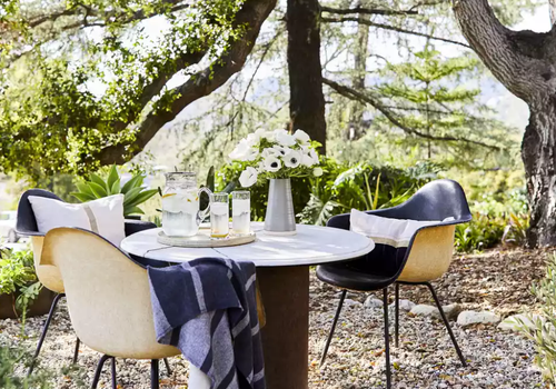 Table setting beneath a tree