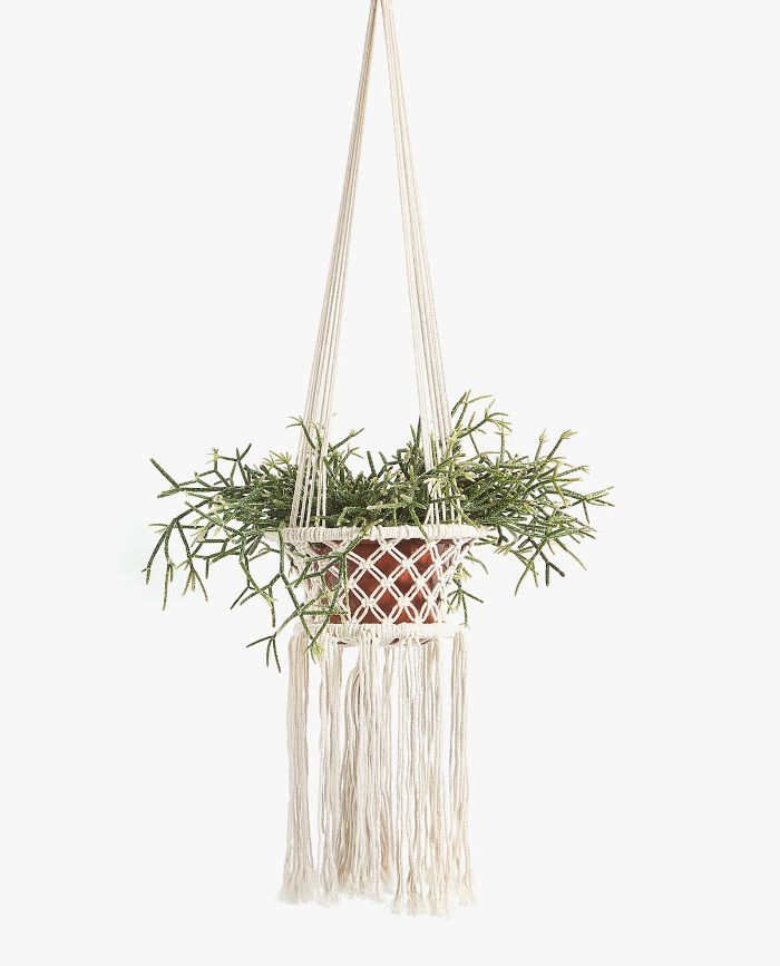 Zara Home Cotton Planter