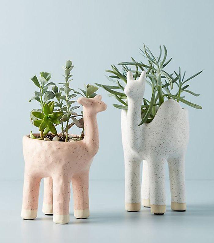 Gazelle Pot