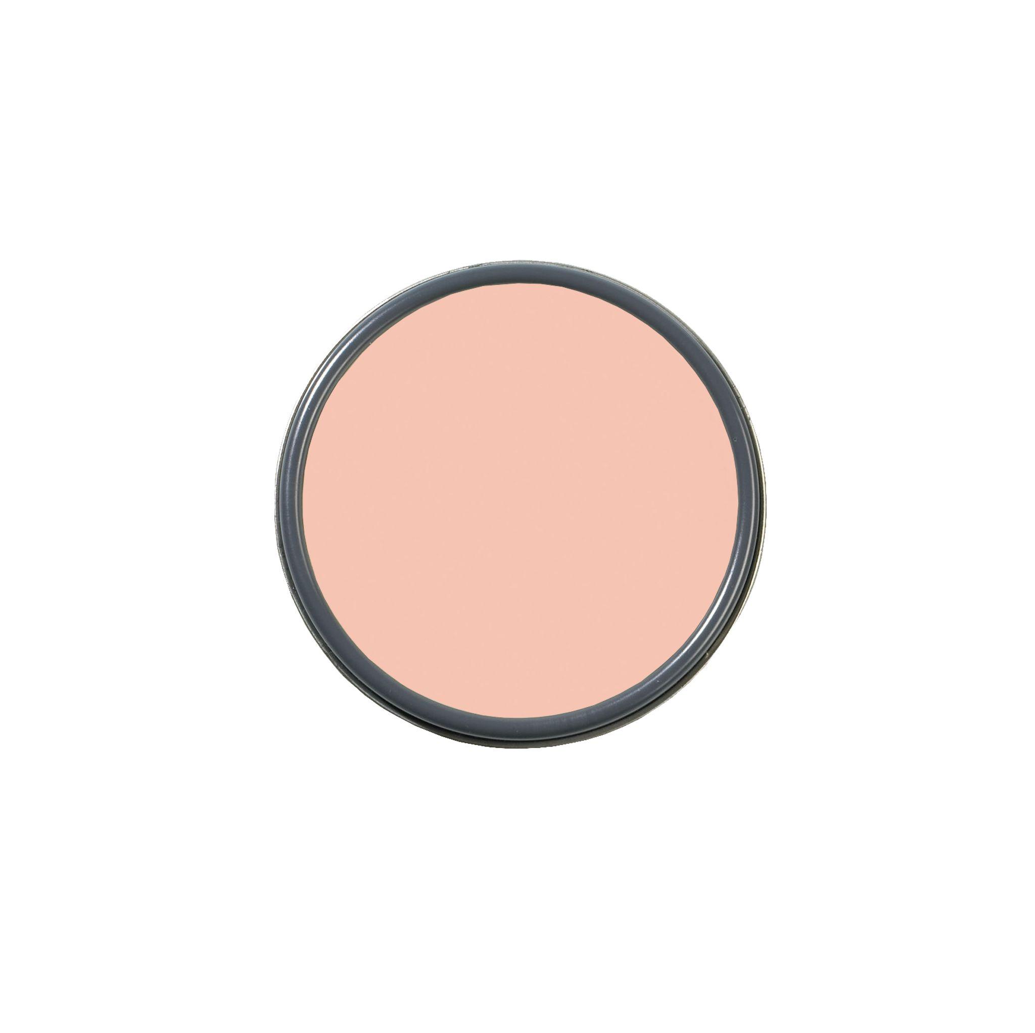 teacup rose pink paint