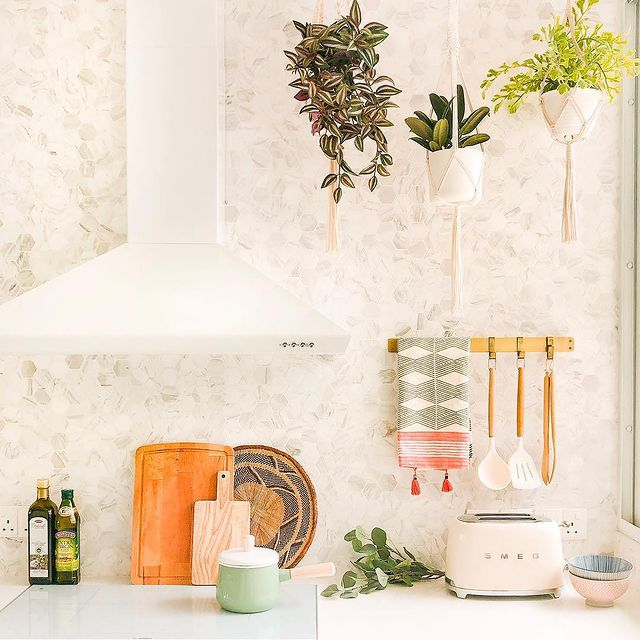 Three hanging plants in a bright kitchen