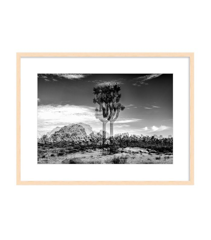 Kiniko Joshua Tree Print