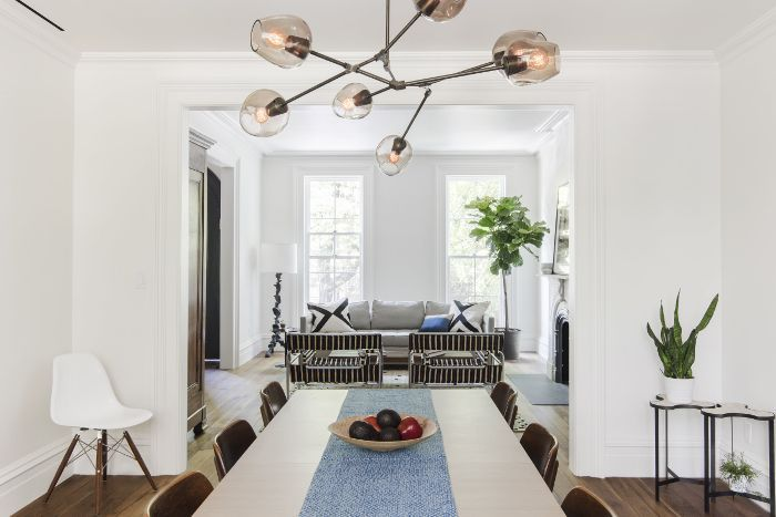 Snake Plant in a bright, modern dining room