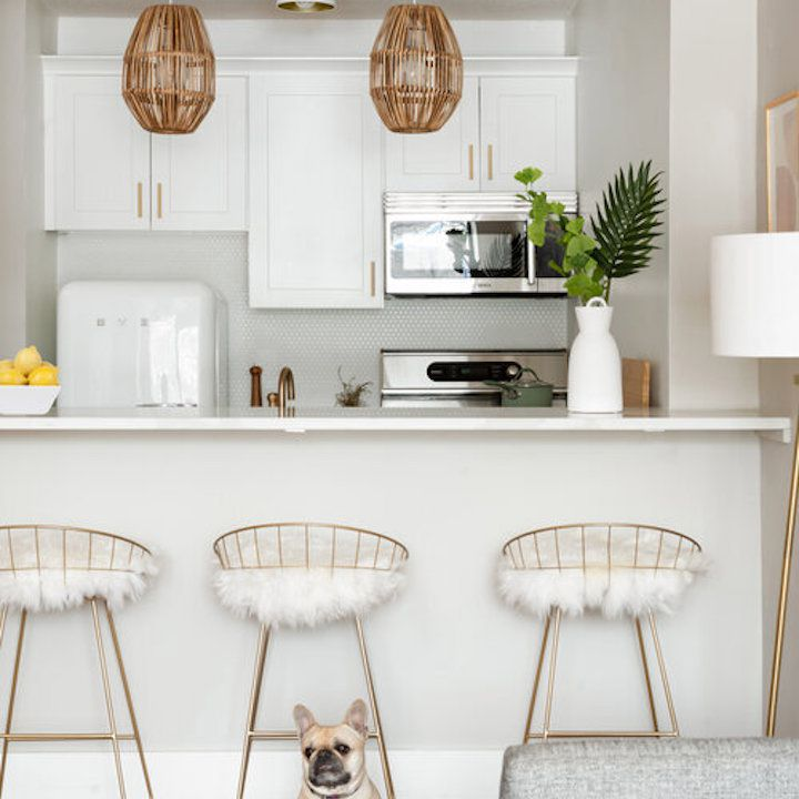 White apartment kitchen with small dog.