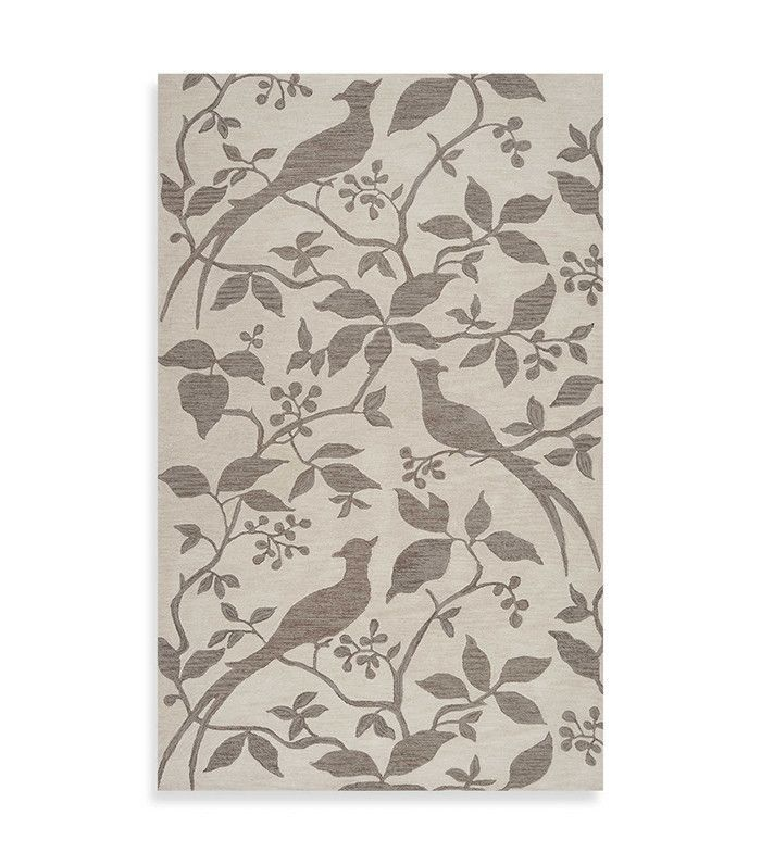 Angelo: HOME Impressions Taupe Rug