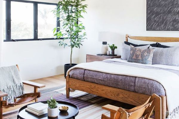 Modern bedroom with several plants