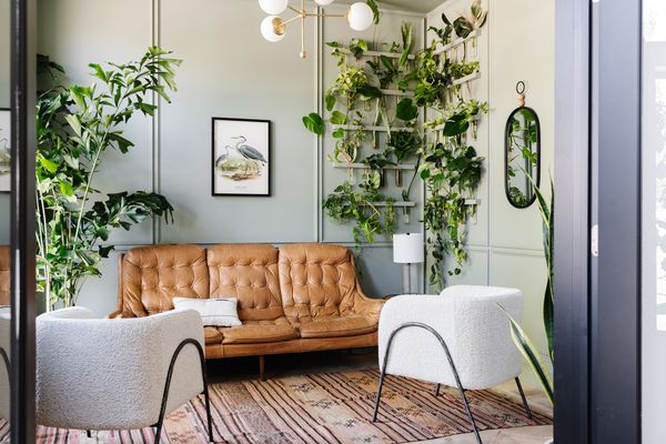 Sitting room with lots of plants and Evergreen Fog painted on walls.