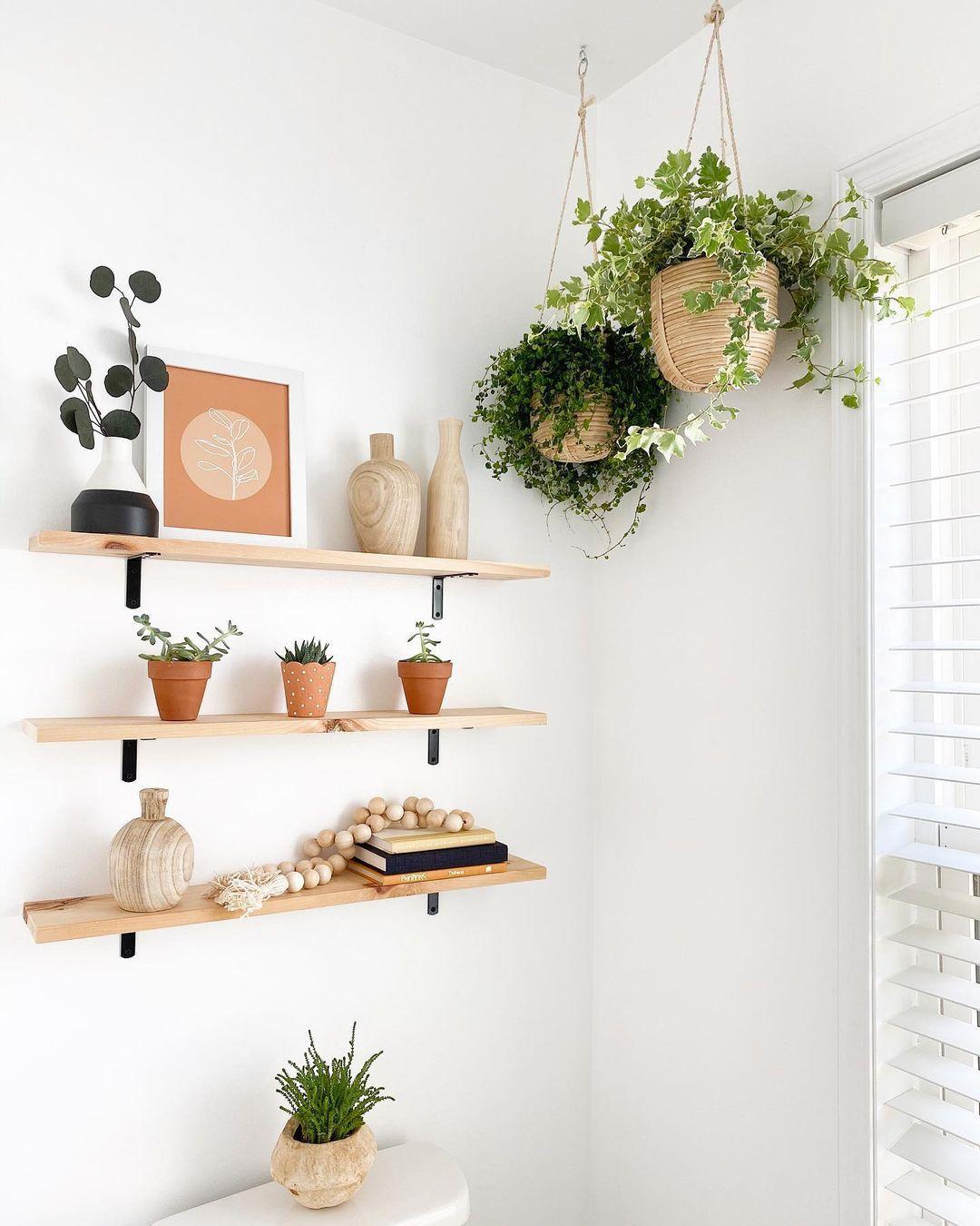 Ivy hanging in basket