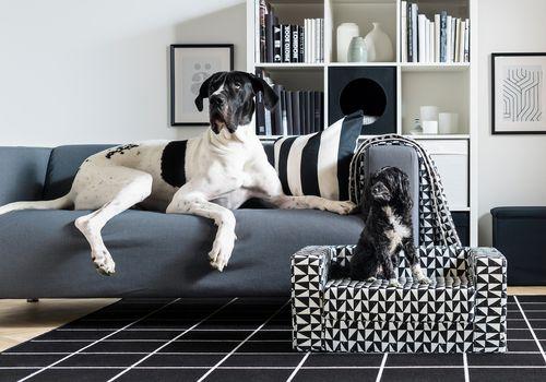 Línea de mascotas IKEA