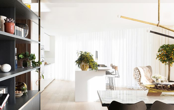 Decorating With Indoor Trees
