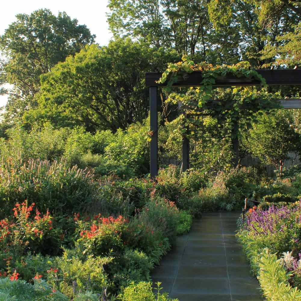Sprawling garden area with lots of flowers.