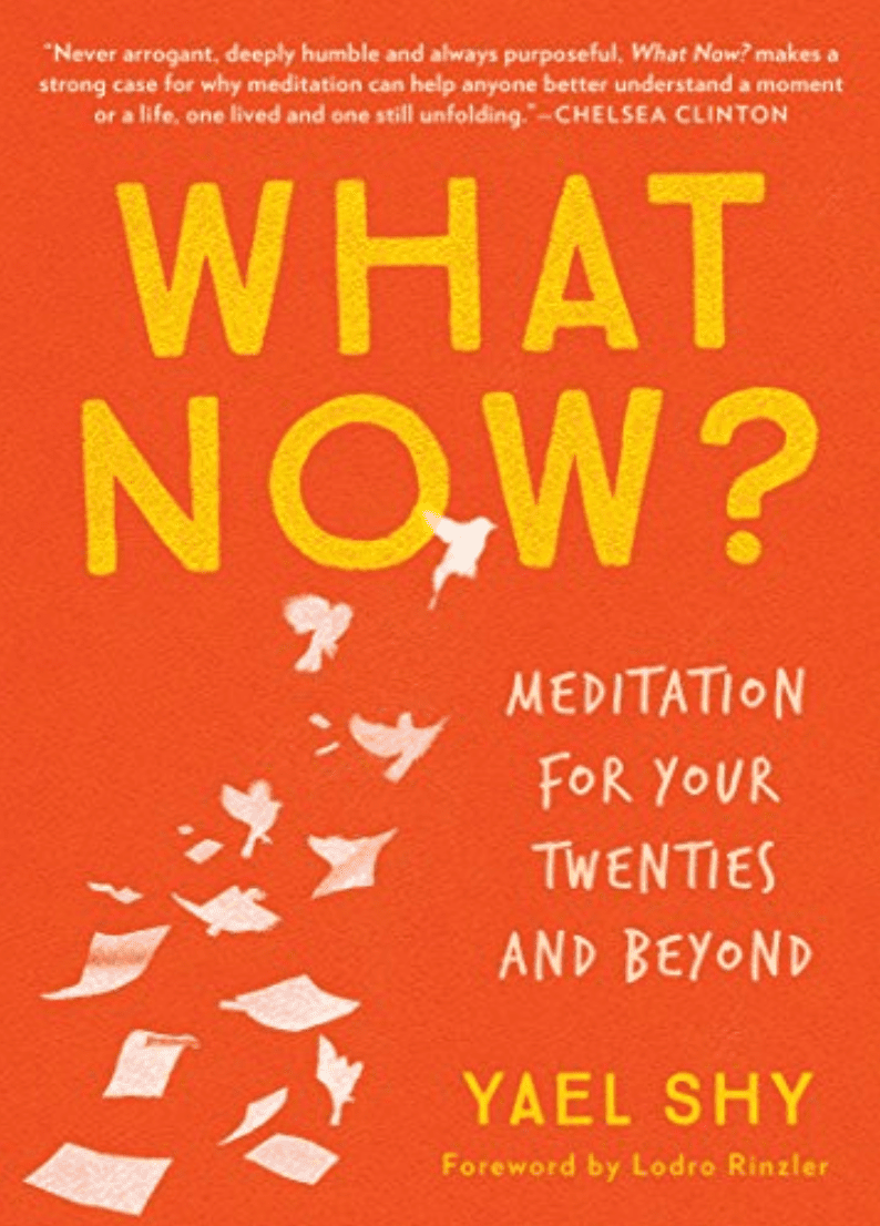 ¿Y ahora qué ?: Meditación para los veinte en adelante por Yael Shy