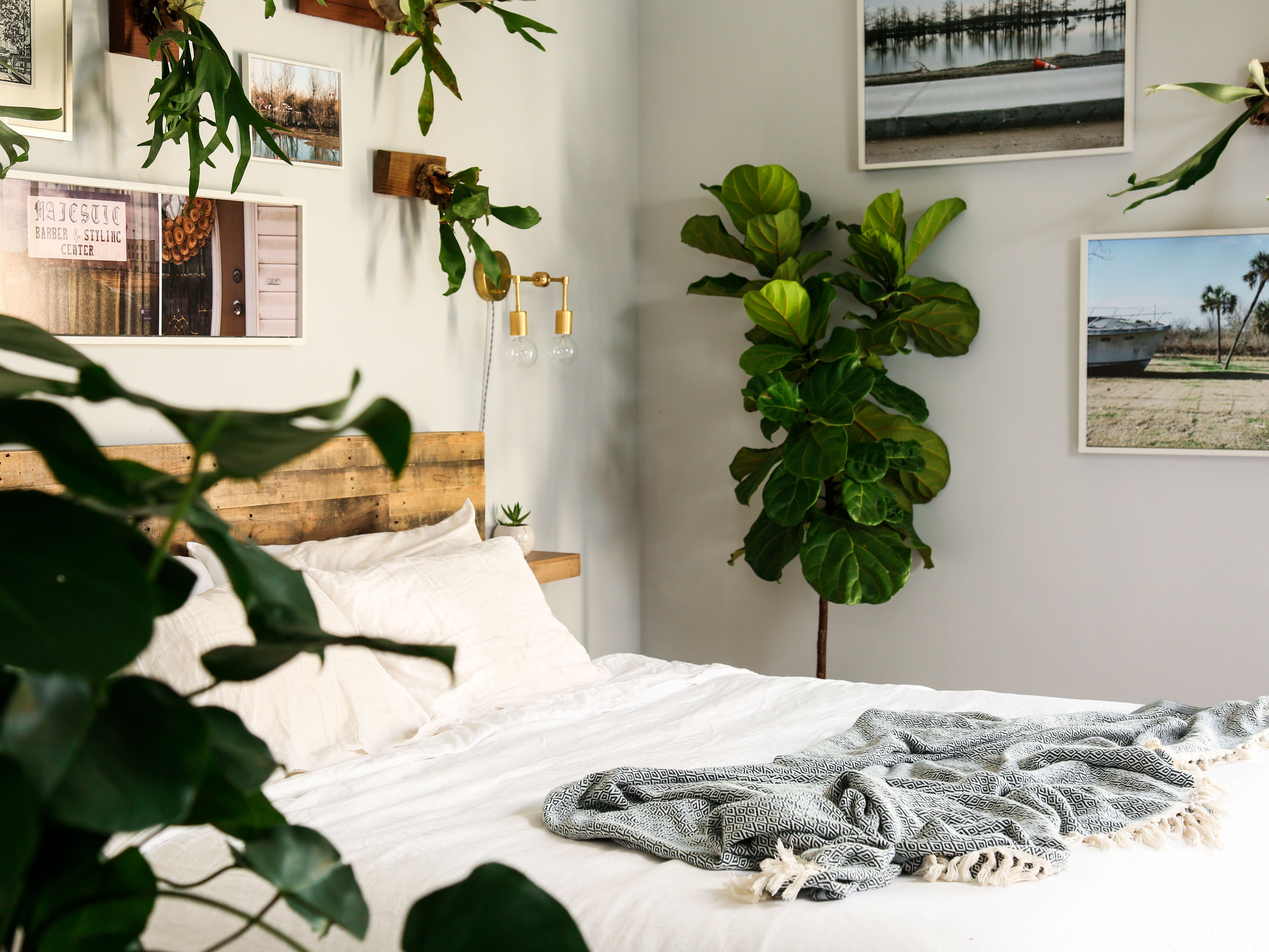 neutral bedroom with plants