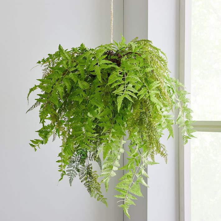 A faux hanging fern plant.