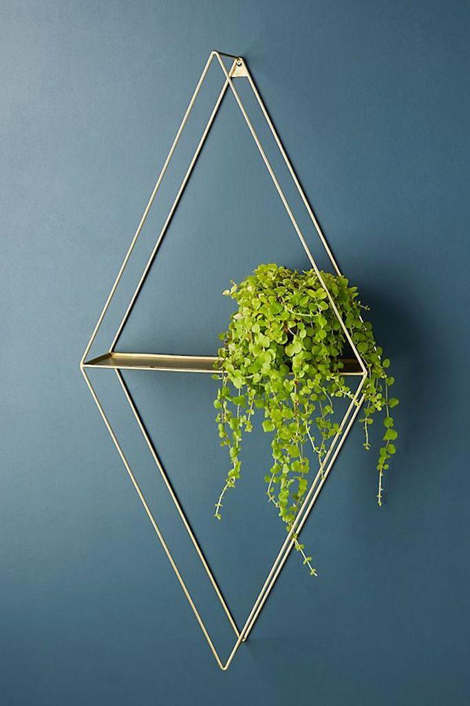 Plant Shelf—Cubicle Decor