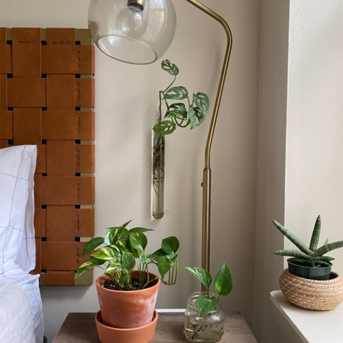 nightstand with globe light, plants, and crystals
