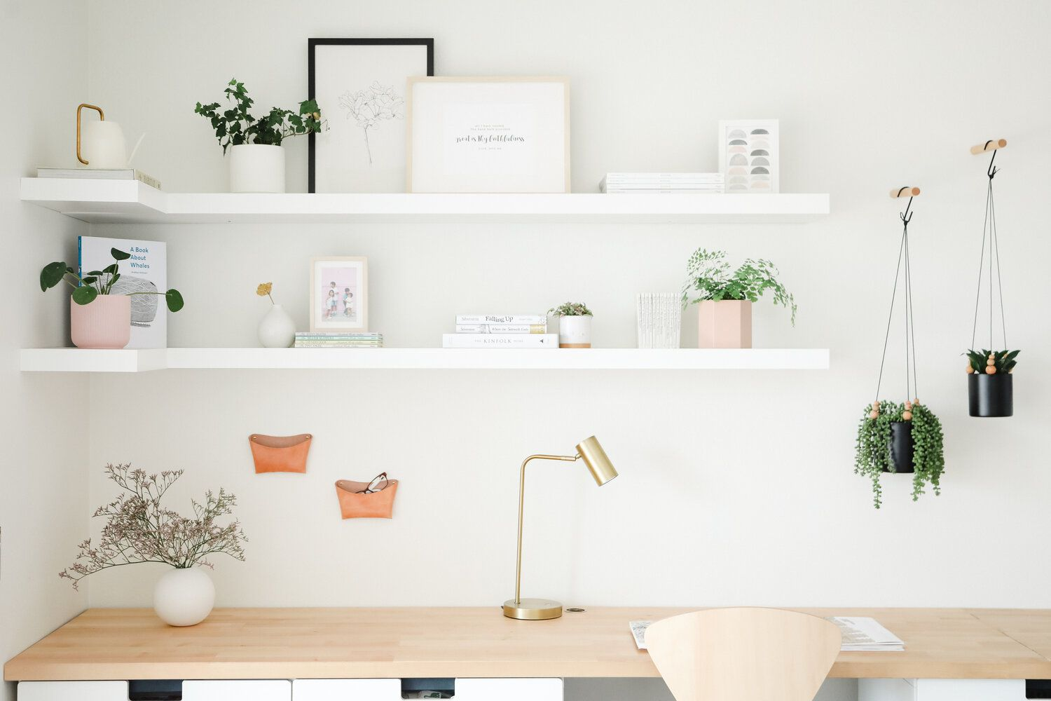 English ivy and other plants on styled office shelves
