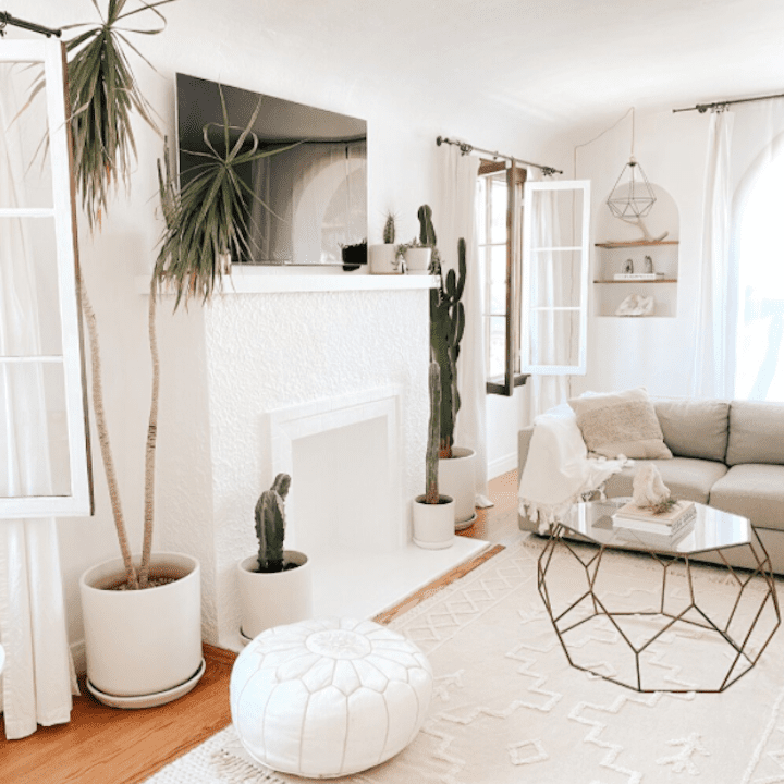 White living room with lots of neutral accents and plants.