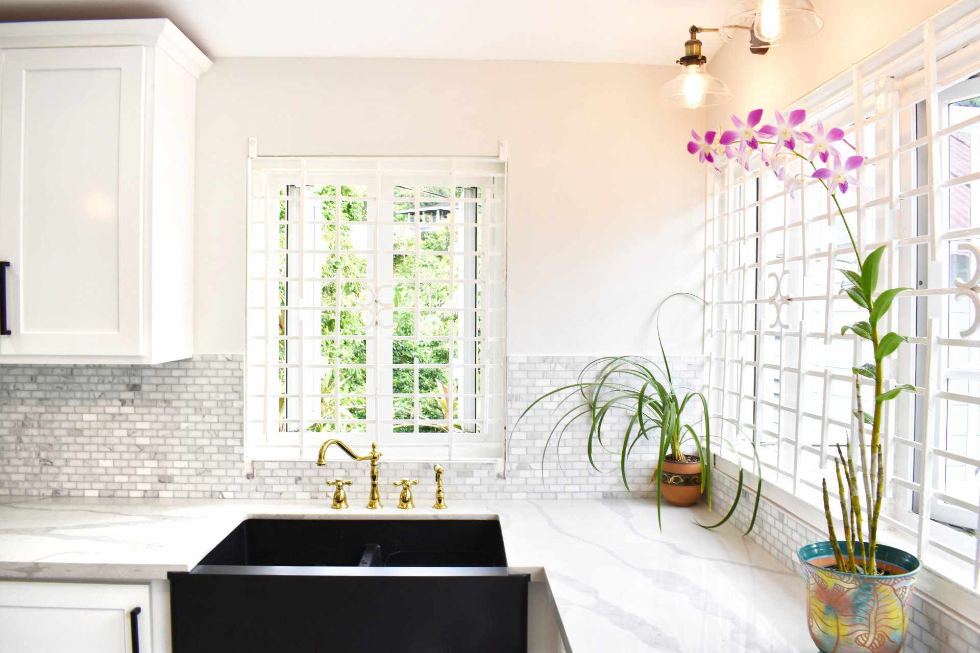 All white kitchen with potted orchid