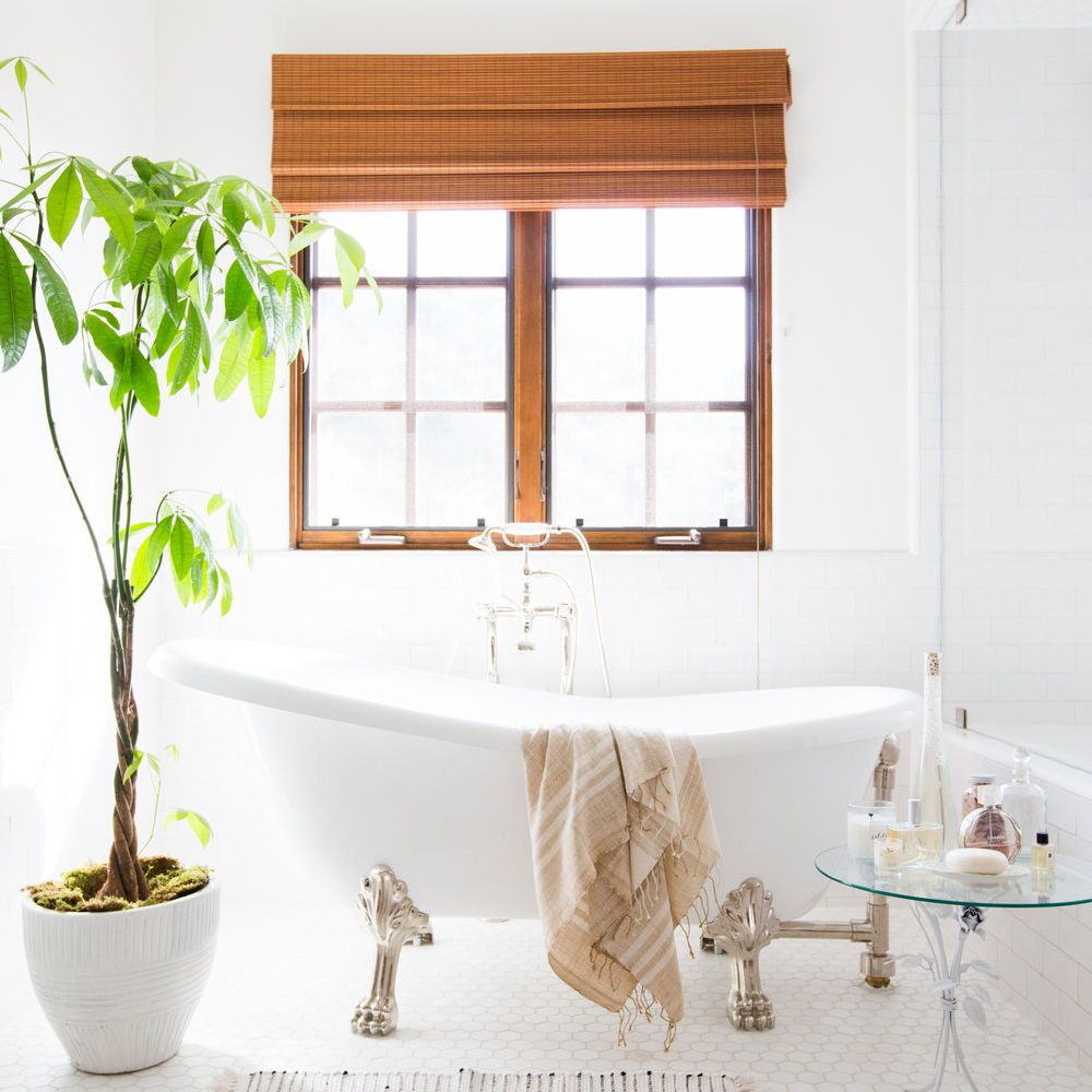 An all-white bathroom with a clawfoot tub and a large lush plant