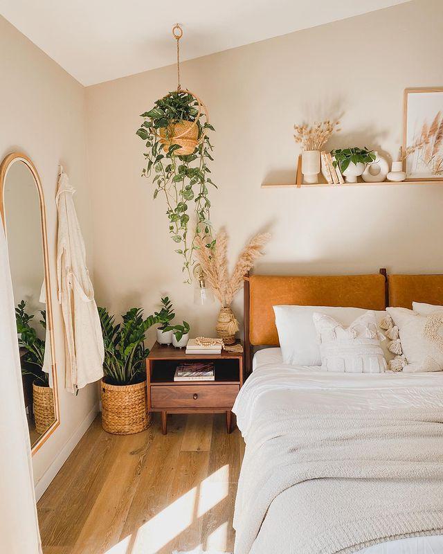 Pothos in a hanging basket in a boho bedroom