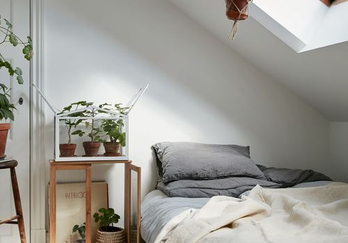 plant-filled attic bedroom