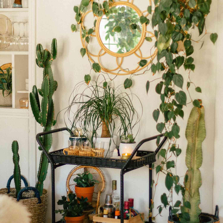 Boho styled bar cart surrounded by houseplants