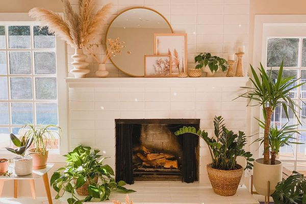 Living room with neutral accents and plants.