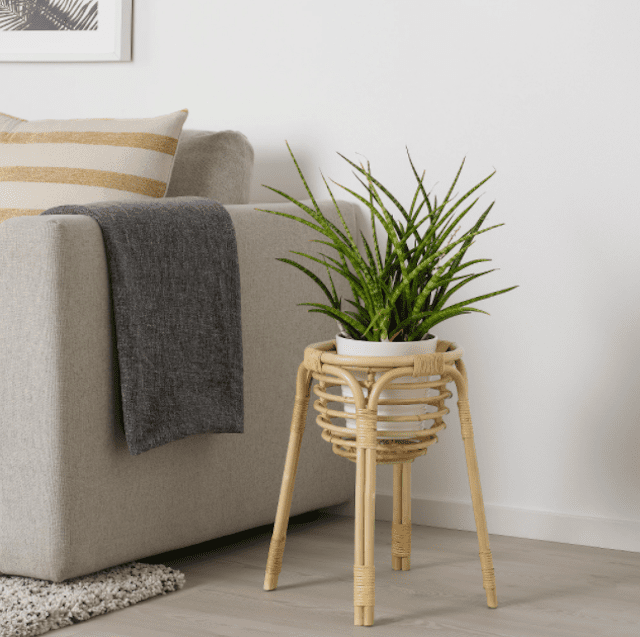 BUSKBO Plant Stand in living room.