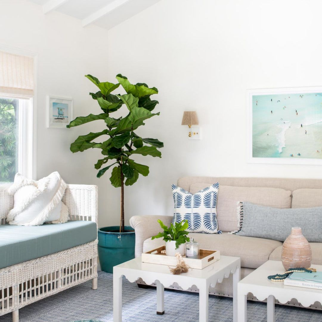 Living room with neutrals and blue