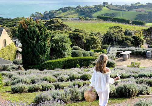 What to Do in Waiheke Island