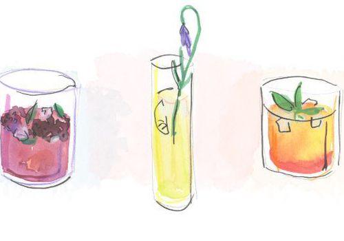 spring cocktails illustration