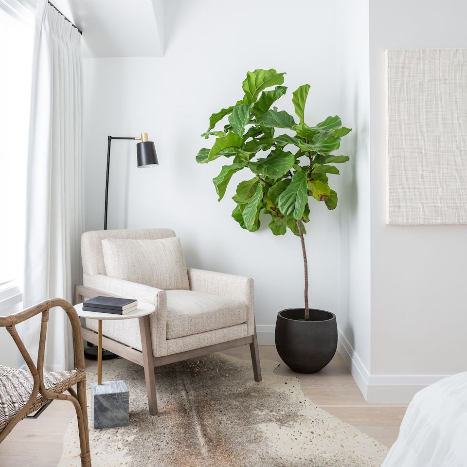 White and tan room