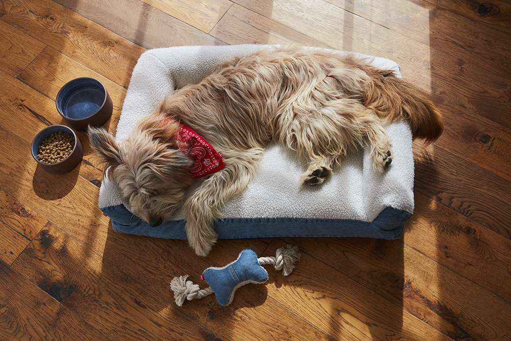 Denim and Sherpa Pet Bed, Blue