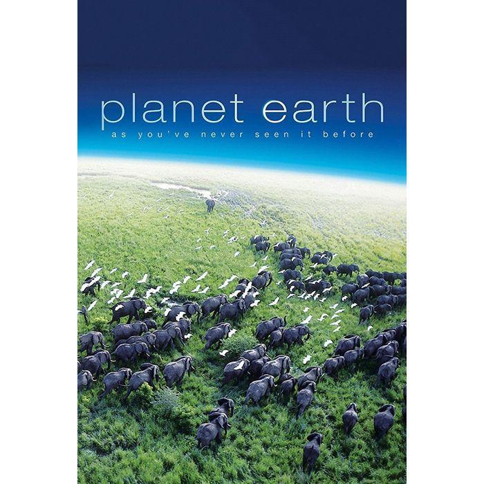 The 8 Best Nature Documentaries on Netflix, Hands Down