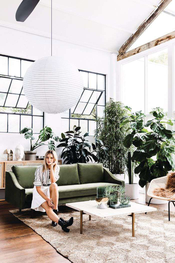 Living room filled with plants and a large paper lantern
