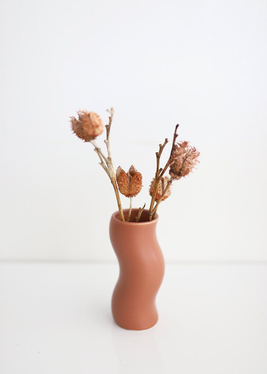 Squiggly terra cotta vase with dried flowers